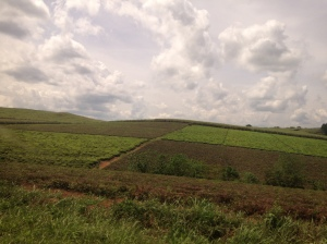 This part of Uganda is so lush and green, a welcome and needed break from the drab desert we call home.